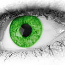 Se former pour travailler dans le monde de l'optique